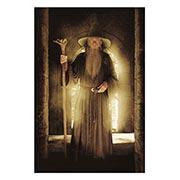 Хардпостер (на твёрдой основе) Lord of the Rings